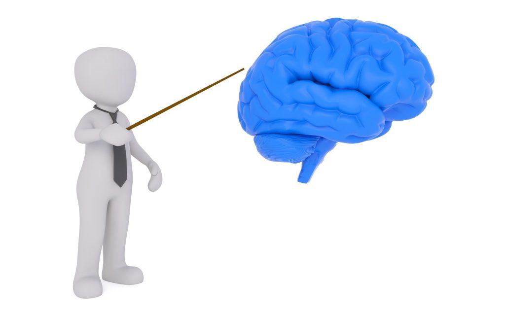Usa il cervello